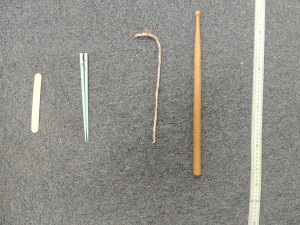 Popsicle stick, chopstick, tree stick?, drumstick, yardstick